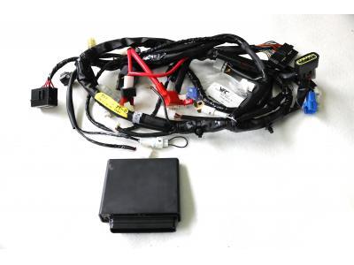 Instalación eléctrica ecu Yec nueva a estrenar para R1'06